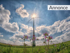 En vindmølle i naturen.
